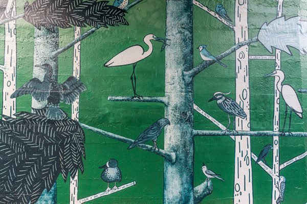 """Canopy"" uses a palate of greens and blues to depict the flora, fauna, and native South Texas birds that populate the dense forest."